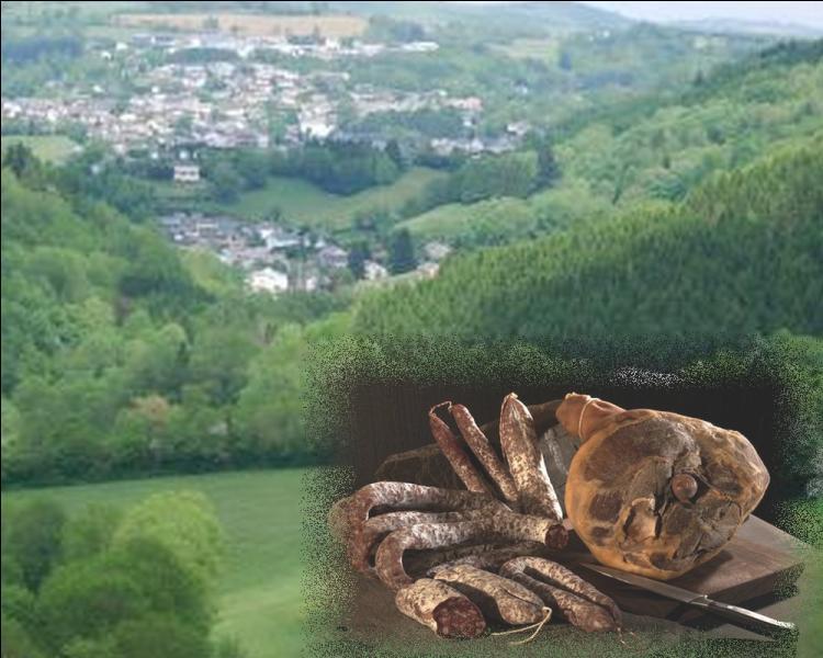 Ce chef lieu de canton du Tarn est spécialisé dans la salaison des jambons secs, saucissons secs et saucisses sèches .....