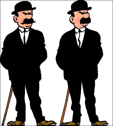 Quels sont les deux noms des fameux frères policiers farfelus ?