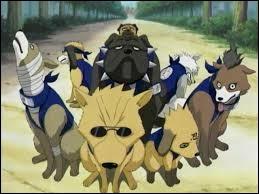 Dans l'escouade des Crocs Traqueurs de Kakashi, comment s'appelle le chien qui porte des lunettes de soleil ?