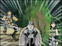 Sur quel animal les ninjas du Son avaient-ils placé un parchemin explosif pour attaquer Sakura qui soignait Sasuke & Naruto ?