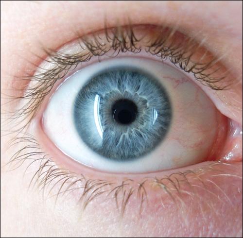Parmi ses personnages, lesquels ont les yeux bleus ?