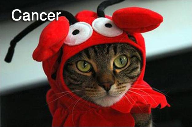 Le Cancer, quant à lui, est protégé par Sélène !