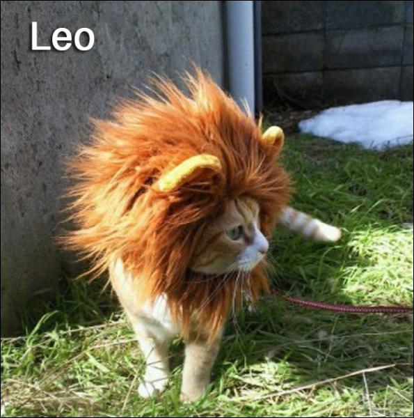 Le Lion est le roi de la savane, sa planète paraît donc évidente !