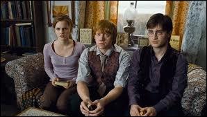 Dans  Harry Potter et les reliques de la mort  partie 1, que lègue Dumbledore à Ron ?