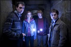 Dans  Harry Potter et les reliques de la mort  partie 2, quel code utilise Gryffondor pour signaler aux autres qu'Harry est de retour ?