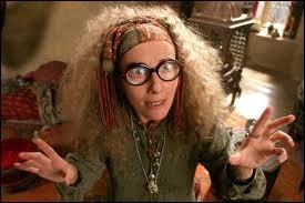 Dans  Harry Potter et le prisonnier d'Azkaban , que voit le professeur Trelawney dans la tasse d'Harry durant le cours de divination ?