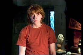Dans  Harry Potter et la coupe de feu , pourquoi Ron ne parle-t-il plus à Harry ?