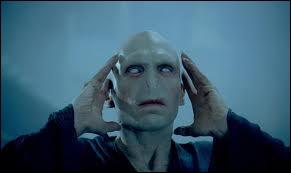Dans  Harry Potter et la coupe de feu , quels objets doivent être mis dans le chaudron pour que Voldemort redevienne humain ?