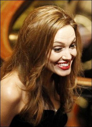 Angelina Jolie n'hésite pas non plus à donner de la voix pour des personnages de films d'animation. Dans le délicieusement drôle Kung Fu Panda, qui est-elle ?