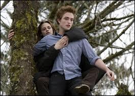 Qui est l'auteur de la saga Twilight ?