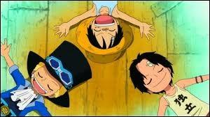 Comment s'appellent les frères de Luffy ?