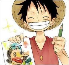 Quel est le nom de Luffy ?