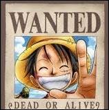 Quelle est la prime de Luffy ? ( Après l'arc de MarineFord )