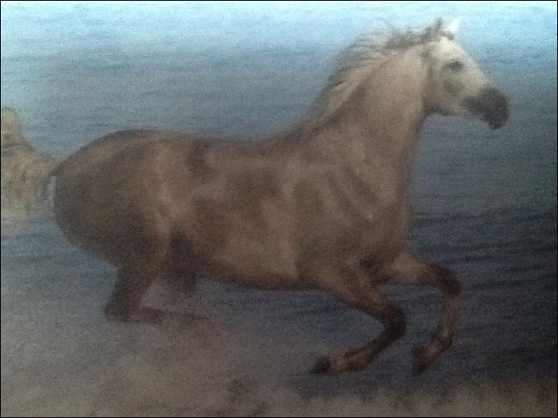 Comment s'appelle l'énergie du cheval naturelle ou acquise par le travail qui génère le mouvement ? (c'est une disposition de la volonté du cheval de se porter en avant. )