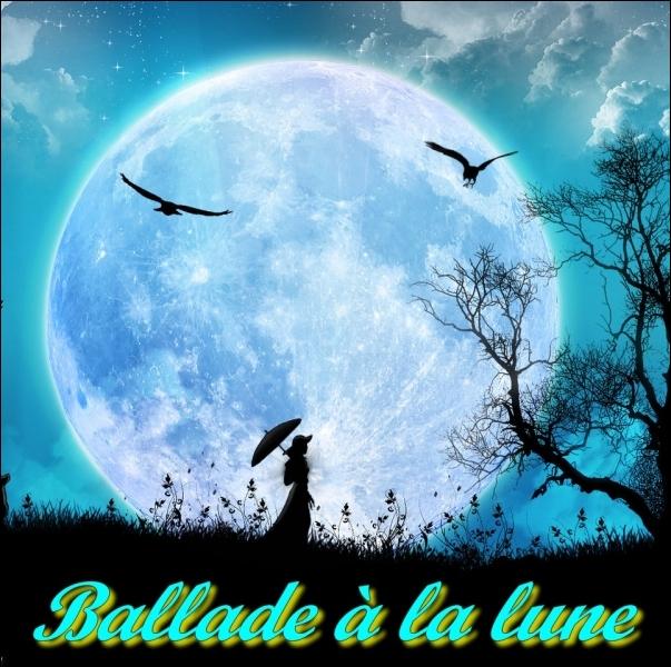 Quizz Demandez la lune... - Quiz Culture generale