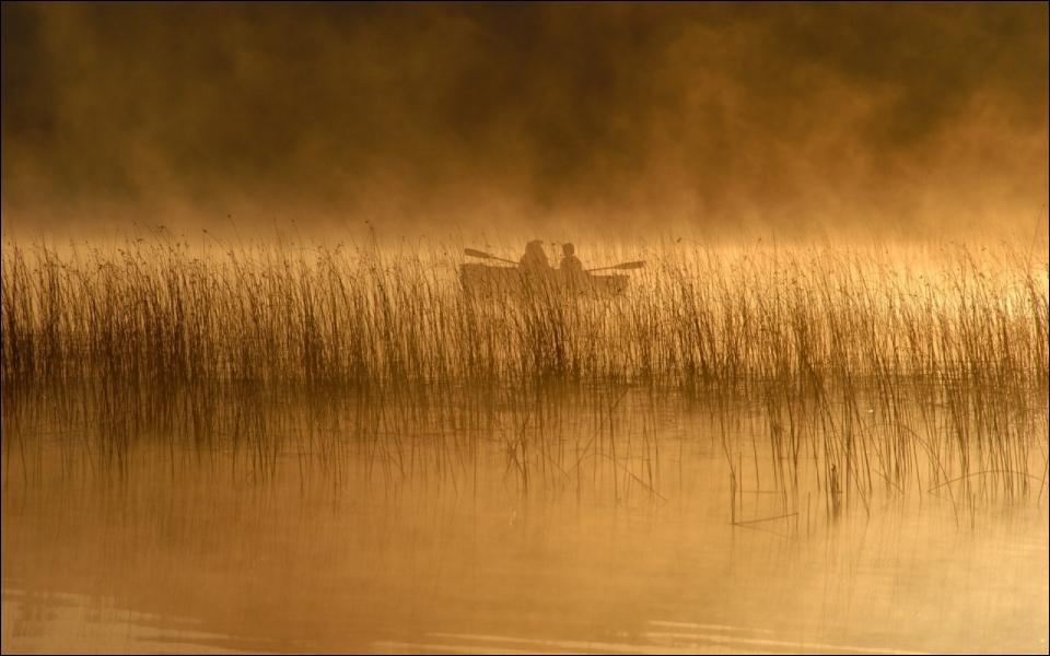 C'est au petit matin, dans les derniers lambeaux de brume, que vous em... ... ... , dans l'espoir d'une grosse prise