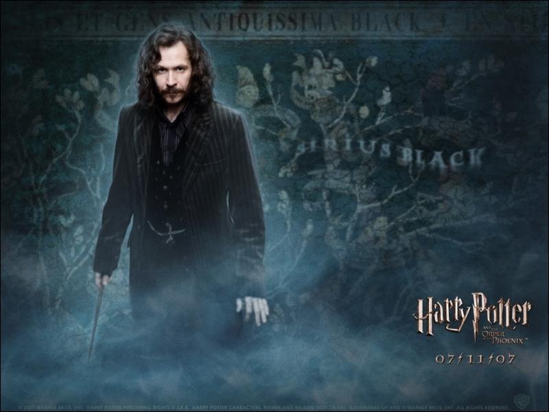 Sirius est en vérité :