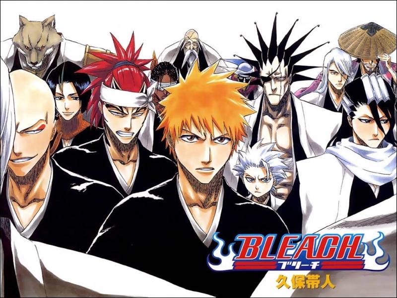 Pour finir, quel personnage fait partie du manga  Bleach  ?