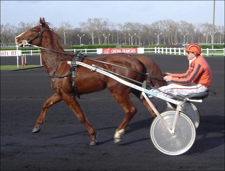Il est généralement attelé à un trotteur à Longchamp ou à Chantilly. Quel est son nom ?