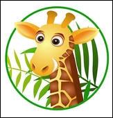 Pourquoi la girafe a-t-elle un long cou ? : D