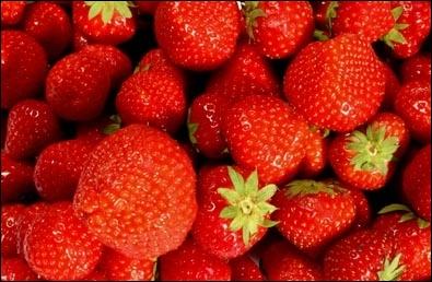 Où se situent les akènes (petits grains secs) de la fraise ?