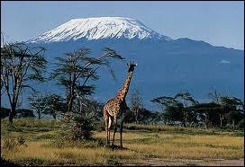 Quelle est cette montagne en photo, située au nord-est de la Tanzanie ?