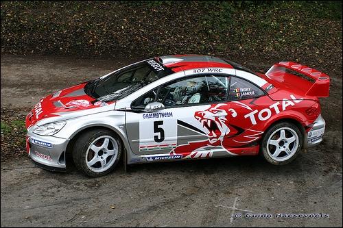 La Peugeot 307 WRC a été construite sur quelle base ?