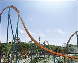 Il existe plusieurs coasters portant le nom de  Goliath .