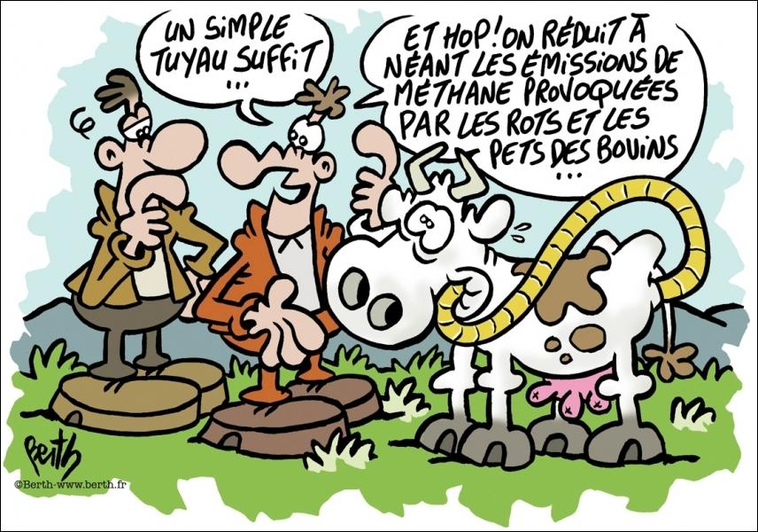Quel est le pourcentage des gaz à effets de serre émis par les vaches en France (éruptions et flatulences) ?