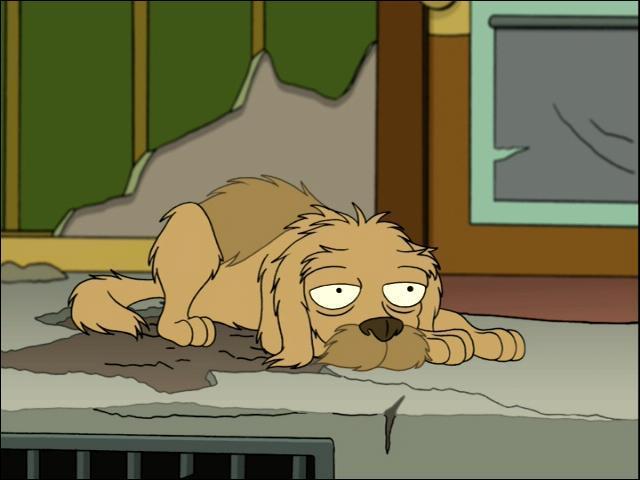Combien d'années entières Seymour (le chien de Fry) a-t-il passées sans Fry entre la première pizza de Fry à son intention et sa mort ? (Attention : exercice de logique ! )