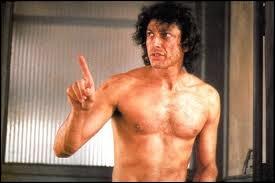 Dans un film de David Cronenberg sorti en 1986, quel animal vient perturber l'expérience de Seth Brundle (interprété par Jeff Goldblum) ?