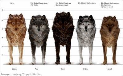 De quelle saga cinématographique ces loups sont-ils issus ?