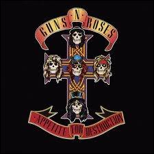 Avec 30 millions d'exemplaires,  Appetite for Desctruction  du groupe de hard rock Guns N' Roses bat tous les records de vente pour un premier album. Quelle chanson se trouve sur cet album ?