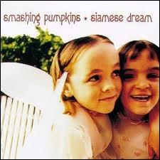 En 1993, les Smashing Pumpkins sortaient leur deuxième album  Siamese Dream  sur lequel on peut écouter  Today ,  Disarm  ou encore...
