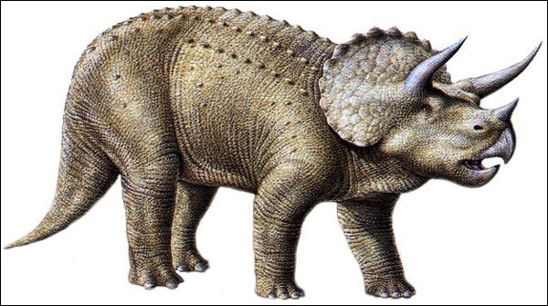 Quel est ce dinosaure ?