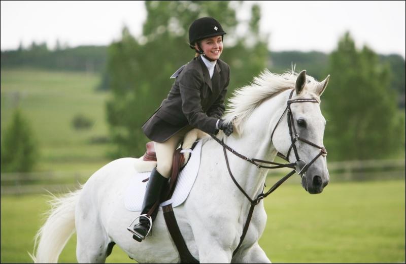 Pour quelle occasion le père d'Amy lui a offert ce cheval ?