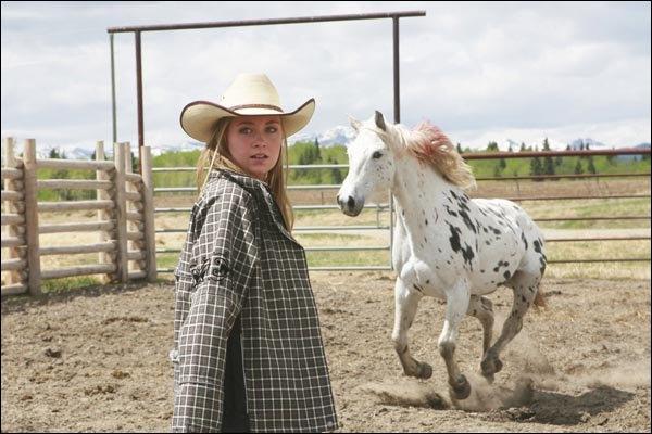 Quelle est la particularité de ce cheval ?