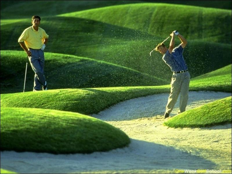 Quand l'on parle du tapis vert, de quoi s'agit-il ?
