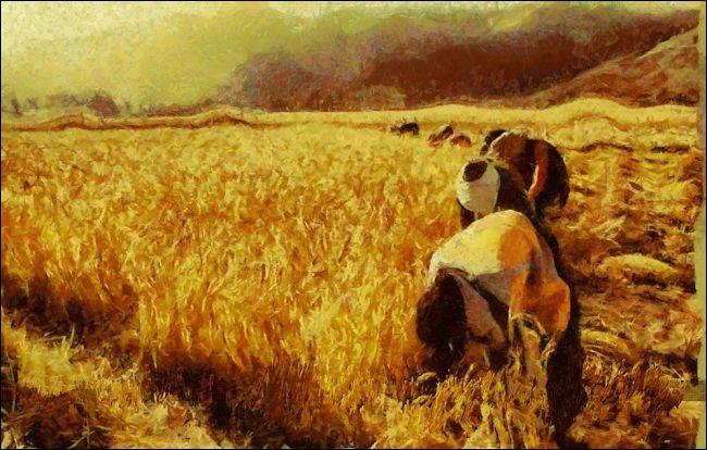 Quel est le prénom du peintre Millet qui s'est souvent inspiré des travaux des champs dans ses peintures ?