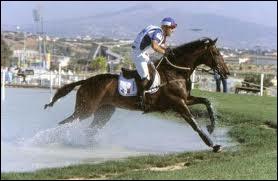 Quel est ce cheval de cross ?