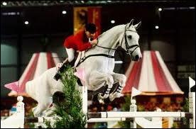 Quel est ce cheval de CSO ?