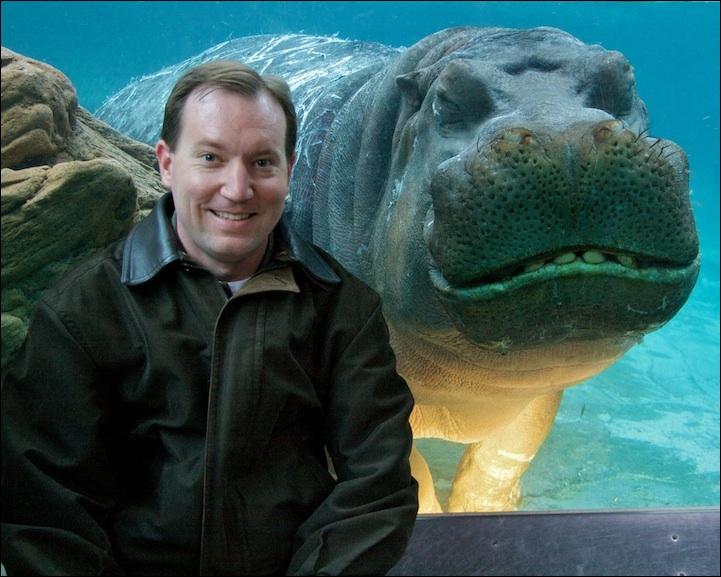 Sur cette photo, il est évident qu'il s'agit d'un hippopotame !