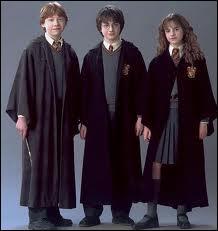 A quel moment Harry Potter, Ron Weasley et Hermione Granger se lient-ils d'amitié ?