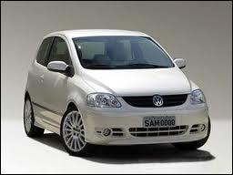 Cette nouvelle VW (Volkswagen) est allée puiser dans les séries américaines pour son prénom, car elle a piqué celui de Mulder...