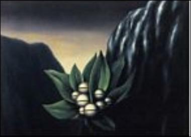 Les fleurs de l'abîme, 1928
