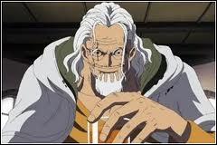 Lui, avant il était blond et il était aussi le capitaine en second de l'équipage du  Roi des pirates . Qui est ce pirate ?