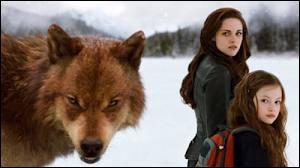 [Twilight 5] En quelle saison se déroule la bataille ?