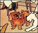 Quel est le nom du chien derrière Milou ?