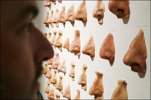 Le nez de Pinocchio a fait sa gloire. Comment  nez  se dit-il en espagnol ?