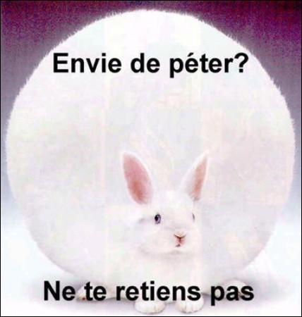 Quel féculent en français évoque la douleur en anglais ?